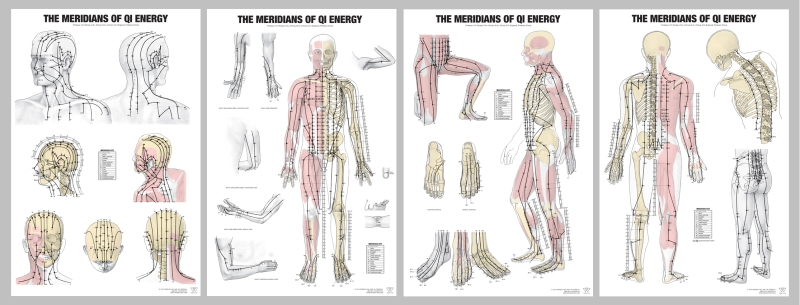 acupuncture meridian charts: Meridian charts set of 4